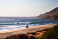 Sea otter beach carmel by the sea california tilt shift effect Stock Image