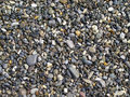 Sea pebble Royalty Free Stock Photos