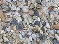 Sea Pebble.