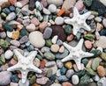 Sea pebble stones and starfish Royalty Free Stock Photo