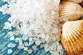 Sea salt crystals and shells on old painted board as background Royalty Free Stock Photo