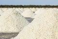 Sea salt heap of in farm Royalty Free Stock Image