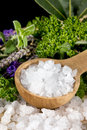 Sea Salt and Herbs Royalty Free Stock Photo
