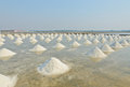 Sea salt piles evaporation pond thailand Stock Photography