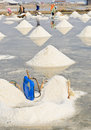 Sea salt piles in thailand harvesting of Royalty Free Stock Images