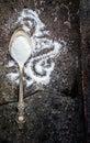 Sea salt in spoon on grange background old metal Stock Image