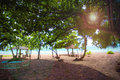 Sea sand and sun looking from beautiful and peaceful beach under big green tree. The beach has sitting area bench and little cocon Royalty Free Stock Photo