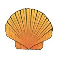 Sea Shell isolated on a white background. Color line art. Retro design. Royalty Free Stock Photo