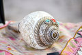 Sea Shell Musical Instrument Royalty Free Stock Photo