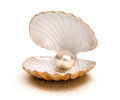 Sea shell with pearl Royalty Free Stock Photo