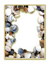 Sea Shell Picture Frame Stock Photo