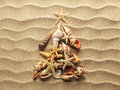 Sea shell on sand christmass tree from shells background Stock Photo