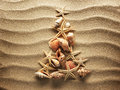 Sea shell on sand christmass tree from shells background Stock Images