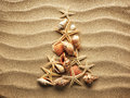 Sea shell on sand shells with as background Royalty Free Stock Photography
