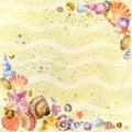 Sea shell on sea send. watercolo Royalty Free Stock Photo