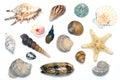 Mar almejas