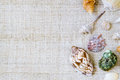 Sea shells arranged on craft texture for background, top view wi