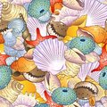Sea shells background bright seamless pattern with Stock Image