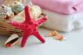 Sea shells basket with and towels spa concept Royalty Free Stock Photos