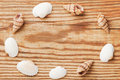 Sea shells forming edge frame on the wooden board, top view Royalty Free Stock Photo