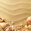 Sea shells with sand Royalty Free Stock Photo