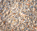 Sea shells on sand summer beach background top view Stock Photos