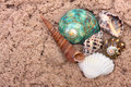 Sea shells on sand. Summer beach background. Top Royalty Free Stock Photo