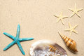 Sea shells on sand. Summer beach background. Top view Royalty Free Stock Photo