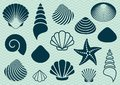 Sea shells set of various and starfish silhouettes Royalty Free Stock Images
