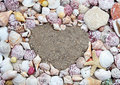 Sea shells in the shape of a heart Royalty Free Stock Photo