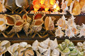 Sea shells in a souvenir shop display at mediterranean Stock Image