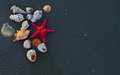 Sea shells and star fish on the sea pebbles Royalty Free Stock Photo