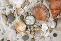 Sea Shells and vintage clock on sand Stock Images