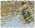 Sea shoal