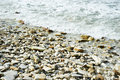 Sea shore with pebble beach on summer day Royalty Free Stock Images