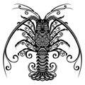 Sea spiny lobster Royalty Free Stock Photo