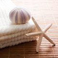 Sea star sea urchin white towel bath ambiance Royalty Free Stock Image