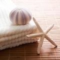 Sea star sea urchin white towel bath ambiance Royalty Free Stock Image