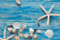 Sea star and shells on wooden blue background. Place for text. T