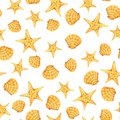 Sea starfish shell watercolor