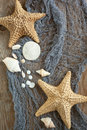 Sea stars and sea shells as background Royalty Free Stock Image