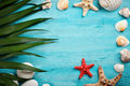 Sea stars, sea stones, palm leaves and shells lying on a blue wooden background . There is a place for labels.