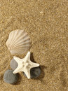 Sea still life over sand. Royalty Free Stock Photo