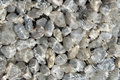 Sea stones under water Royalty Free Stock Photo
