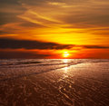 Sea sunset Royalty Free Stock Photo