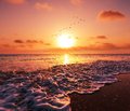 Sea sunset scene on beach Stock Photos