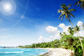 Sea tropical beach with palm trees beautifull nature background Stock Images