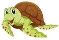 Sea turtle on white background Royalty Free Stock Photo