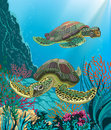 Sea turtles Royalty Free Stock Image