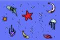 Sea underwater creatures Royalty Free Stock Photo